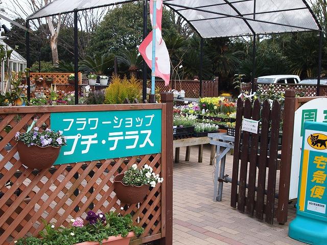 141伊豆高原旅の駅
