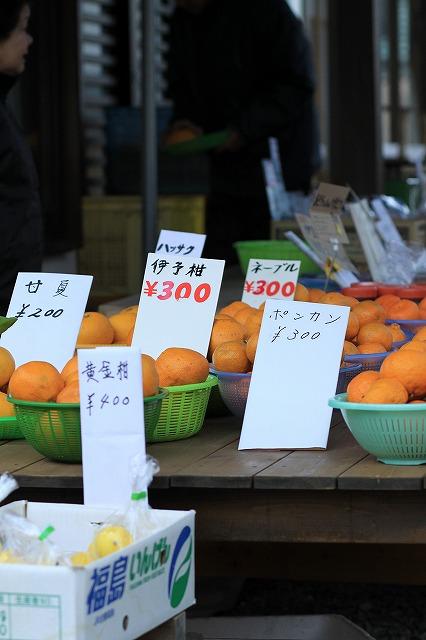 IMG_9391河津桜祭り