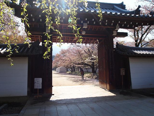 056醍醐寺