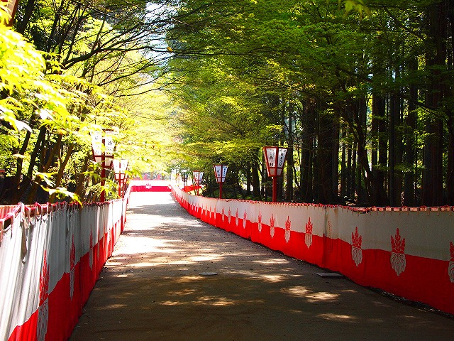 066醍醐寺