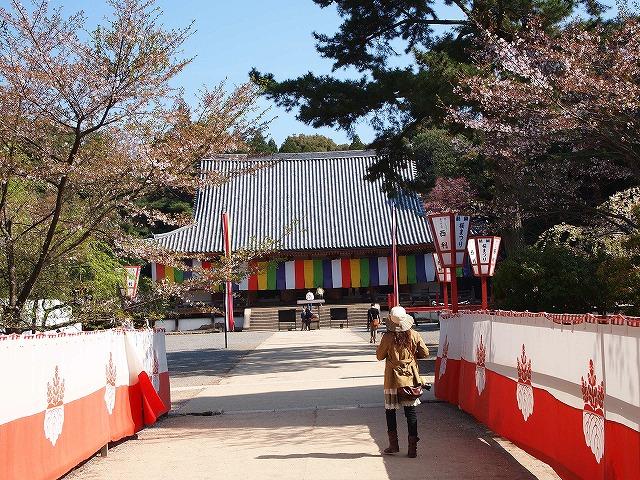 074醍醐寺
