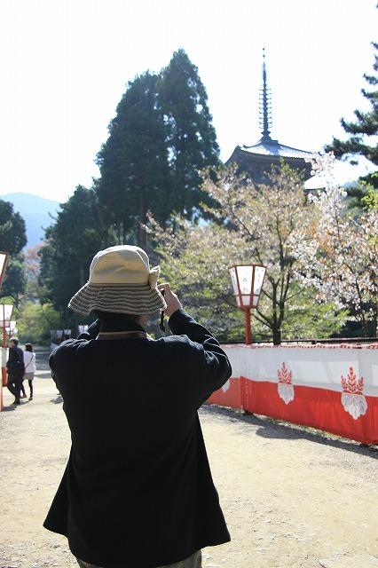 IMG_2156醍醐寺