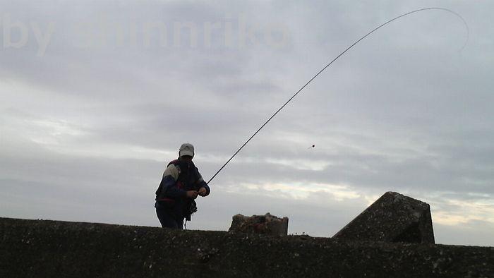 ひとりで釣りする猫の夫