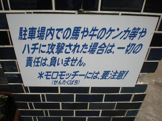 DSCN1380_R.jpg