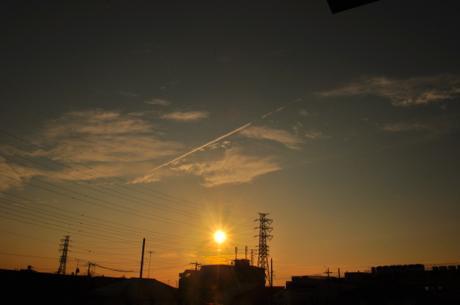 th_DSC_3995.jpg