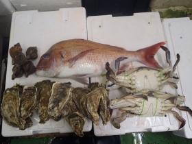 9鮮魚セット2014930