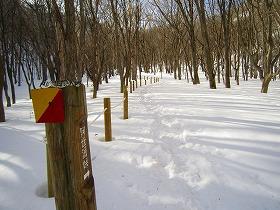 阿世潟峠への雪道