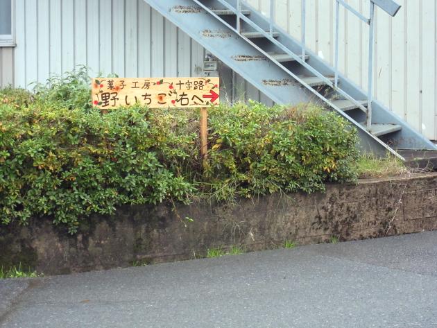 野いちご3