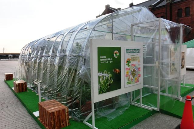 環境保全型農業展示ビニールハウス