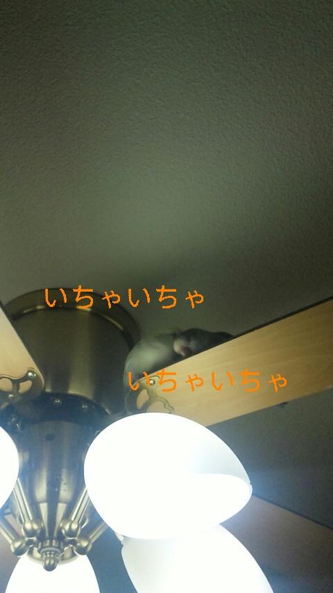 111202_022909_ed.jpg