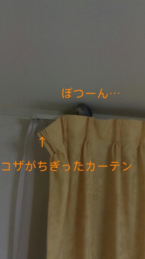 111202_023139_ed.jpg
