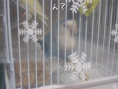 23_20120410024037.jpg