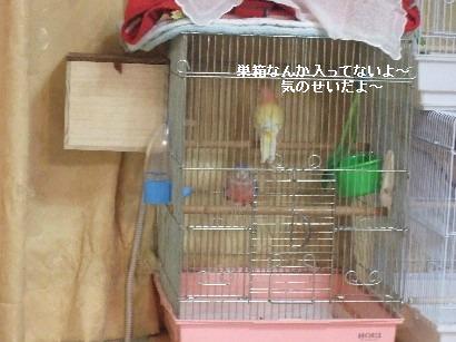 5_20120328000814.jpg