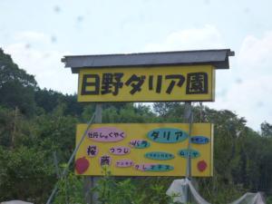 P1210798.jpg