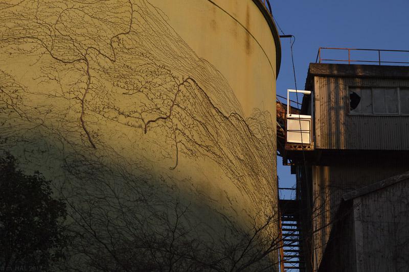 Industrial Ruins_2012-03-18-7