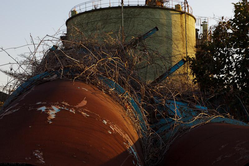 Industrial Ruins_2012-03-18-1