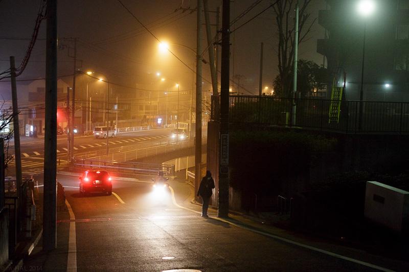 20140204_fog-01.jpg