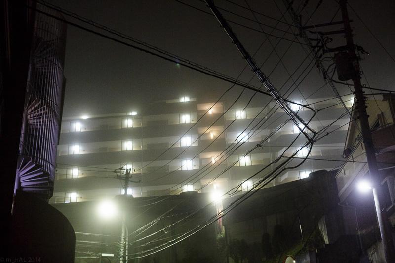 20140204_fog-02.jpg