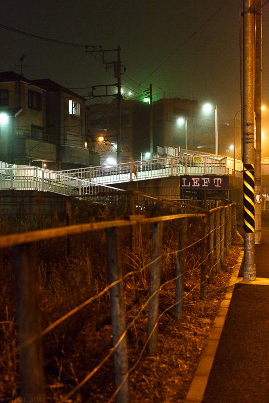 20140204_fog-07.jpg