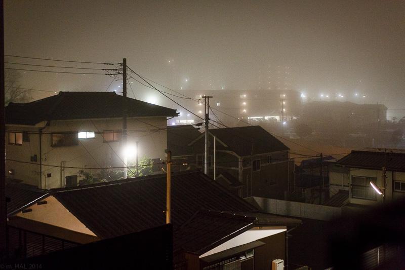 20140204_fog-10.jpg