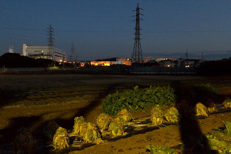 night_vision_2012-02-27-1.jpg