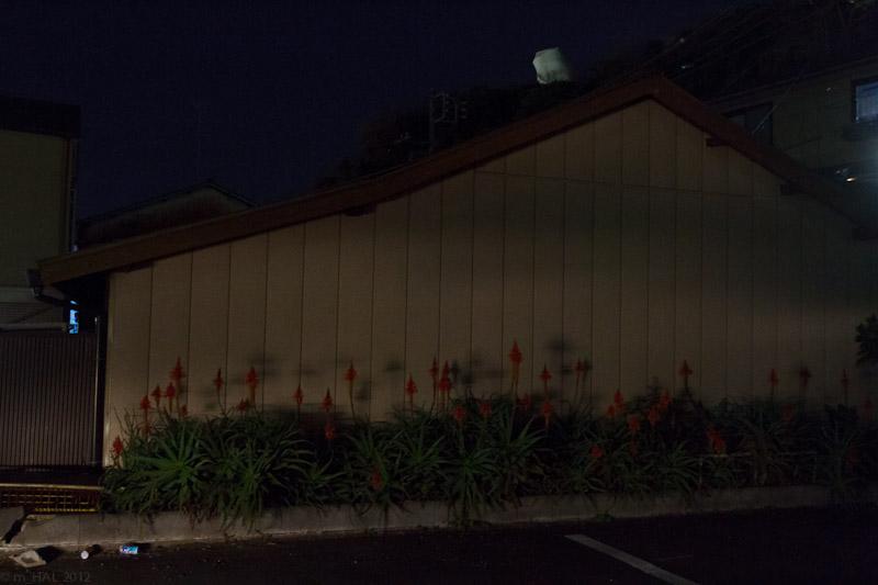 night_vision_2012-02-27-5.jpg