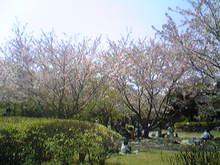 しくのテケトーBROG*-Image130.jpg