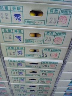 hanewase1.jpg