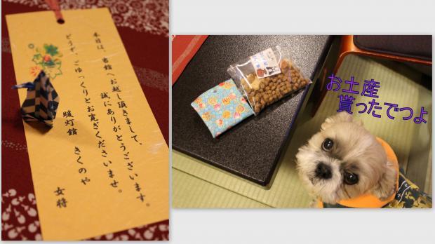2013-01-072_convert_20130208002634.jpg