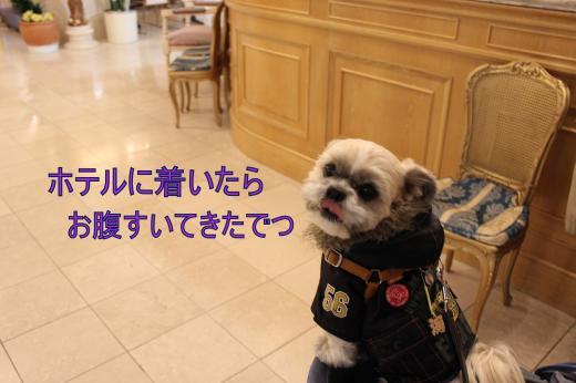 ・搾シ祢MG_2408_convert_20130131002539