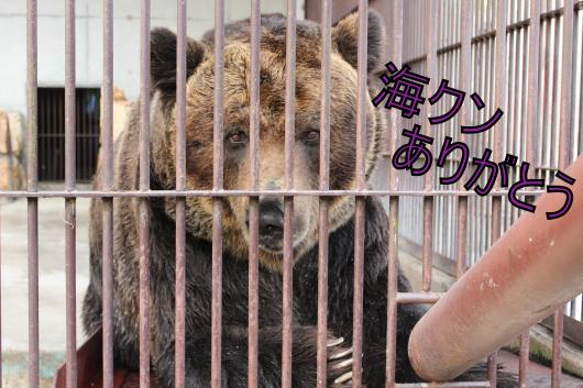 ・搾シ祢MG_2597_convert_20130210221128