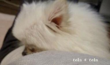 004_20111011215736.jpg