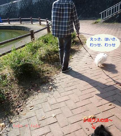 017_20111009214202.jpg