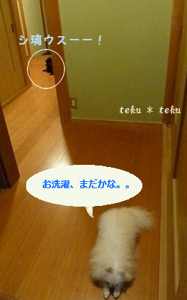 024_20110916224348.jpg
