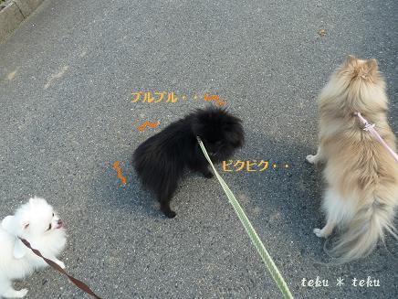 028_20111019000411.jpg
