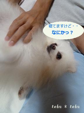 ne_20110912212407.jpg