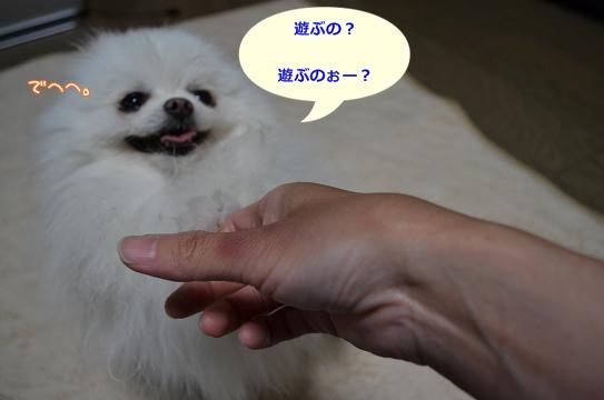ne_20130524215938.jpg