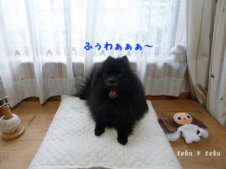 si2_20110911204833.jpg