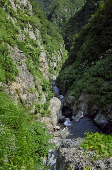 sakusiro9.jpg