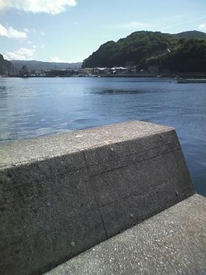 20110913_008.jpg