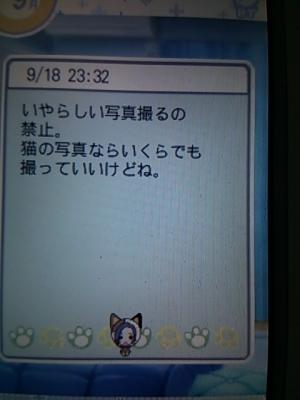 DSC_1151_2014092100385523d.jpg