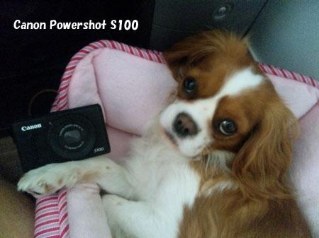powershots100.jpg