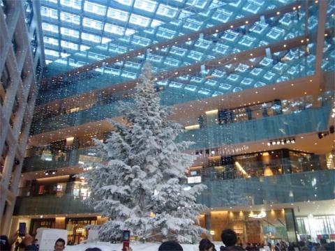 今年のクリスマスツリーは?