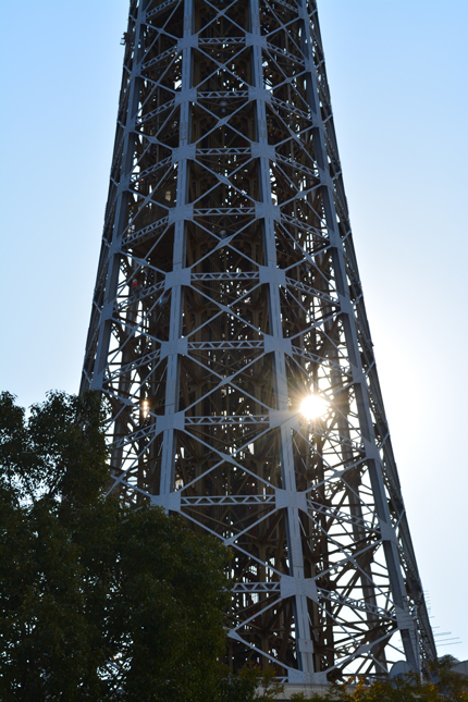 マリンタワーから太陽が顔だして・