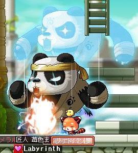 panda11.png