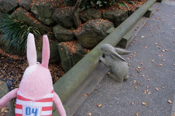 ウサギ(石化)