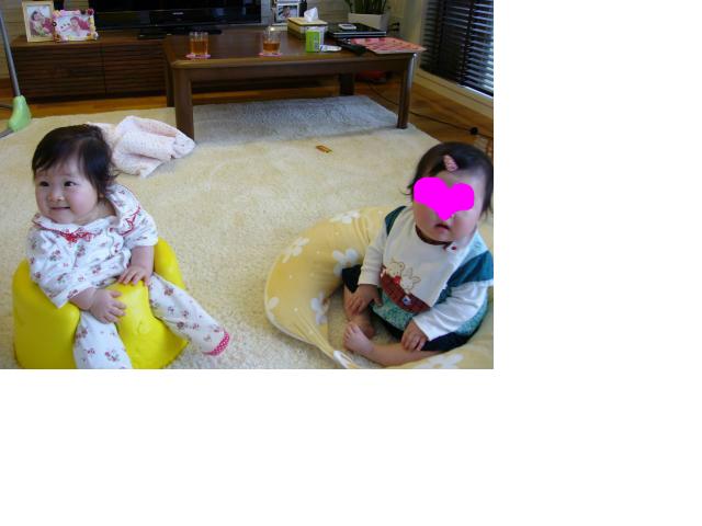 snap_sobakasuhige_201242211141.jpg