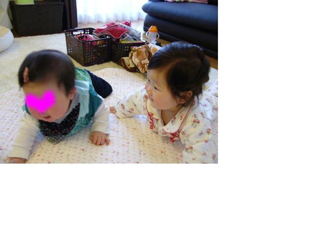 snap_sobakasuhige_201242211344.jpg