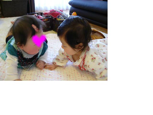 snap_sobakasuhige_201242211555.jpg