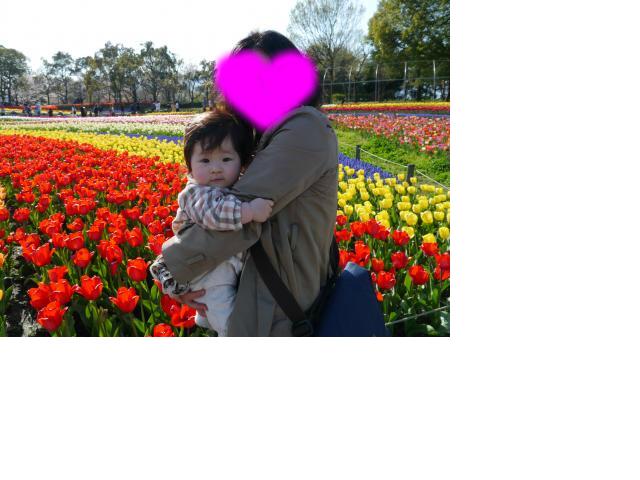 snap_sobakasuhige_201246221413.jpg